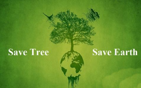 Save Trees Save Nature